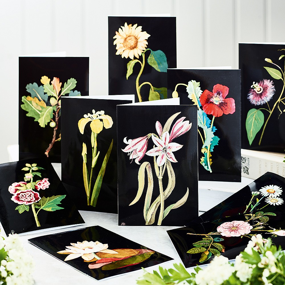 Collection Inspiration Art Botanique   Museum Selection France 7b742ac42cd